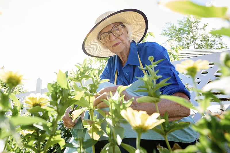 Discover the Remarkable Benefits of Gardening for Seniors